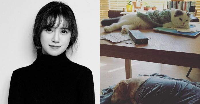 guhyesun_kucing