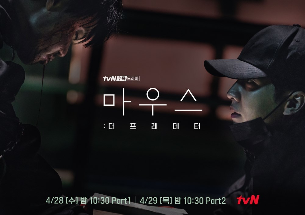 tvn mouse